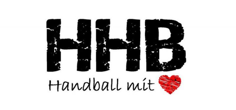 Handballdinos gegen Jungfüchse